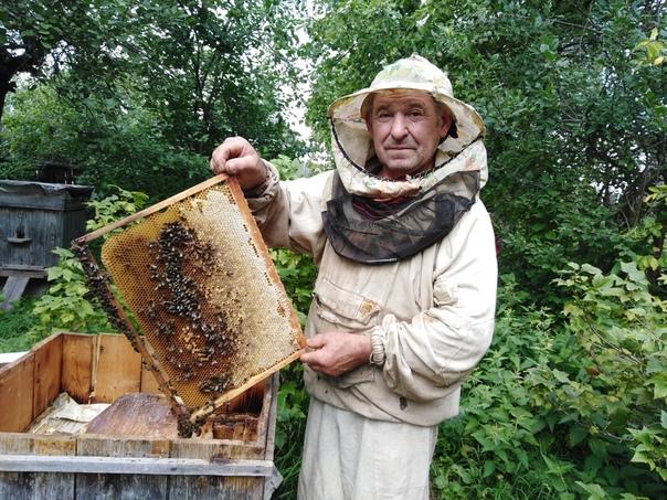 охотники за пчелами фото праздничные картинки движущимися