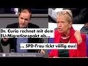 Seehofers 8 Fake-News aus dem Innenministerium - Ulli Nissen (SPD) rastet aus | Dr. Gottfried Curio
