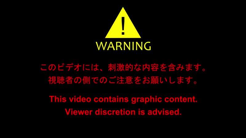 【自主制作アニメ】コマ撮りホラー 化けヤモリ(2-5) - Horror Stop Motion Animation.mp4
