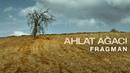 Дикая груша Ahlat Agaci 2018 Official Trailer