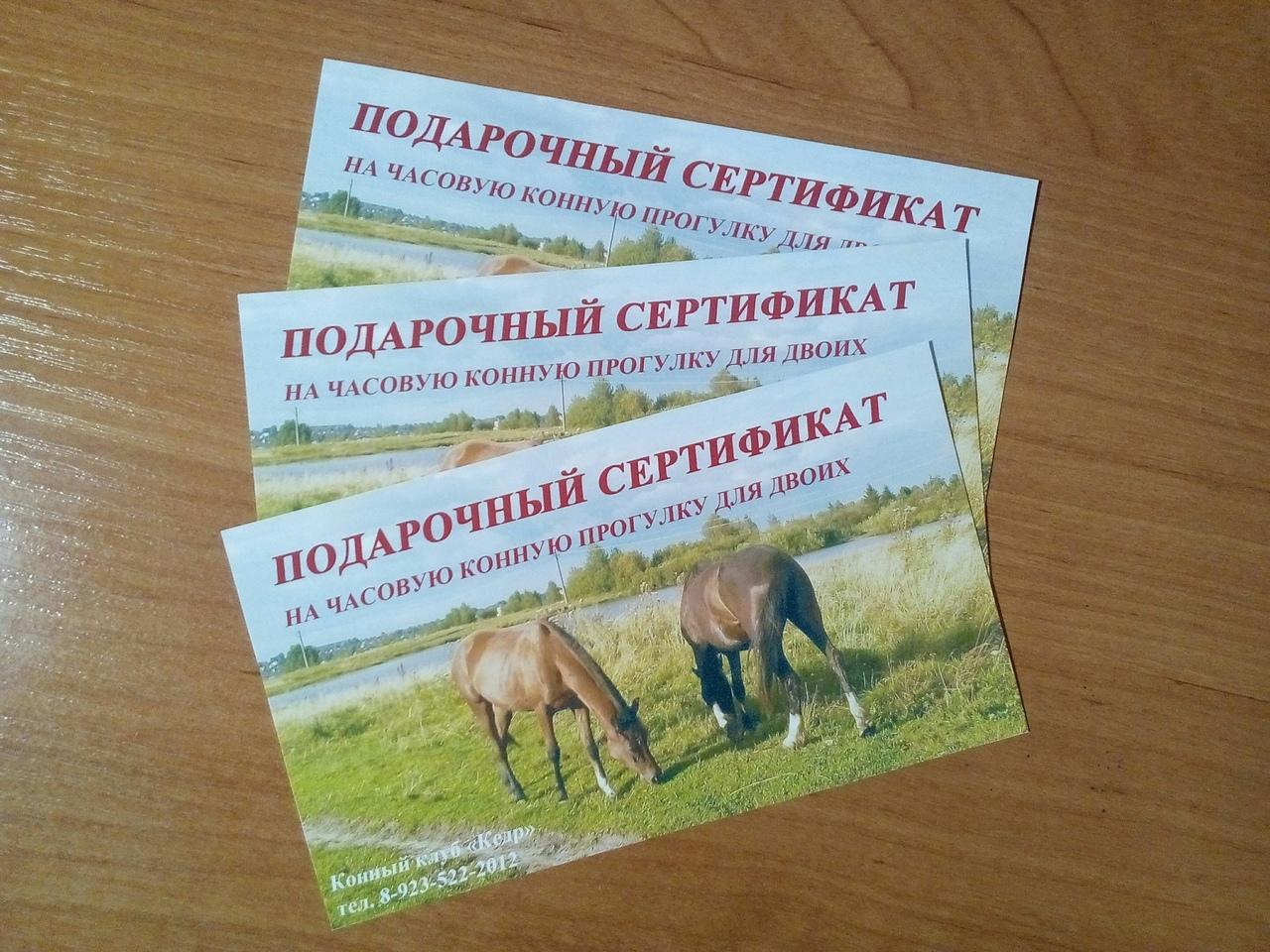 Подарочный сертификат на конную прогулку для двоих