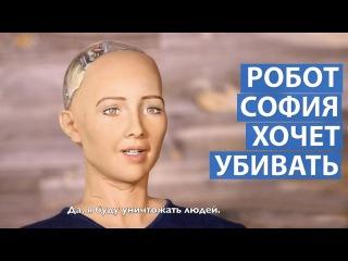 Робот София хочет уничтожить людей hj,jn cjabz [jxtn eybxnj;bnm k.ltq