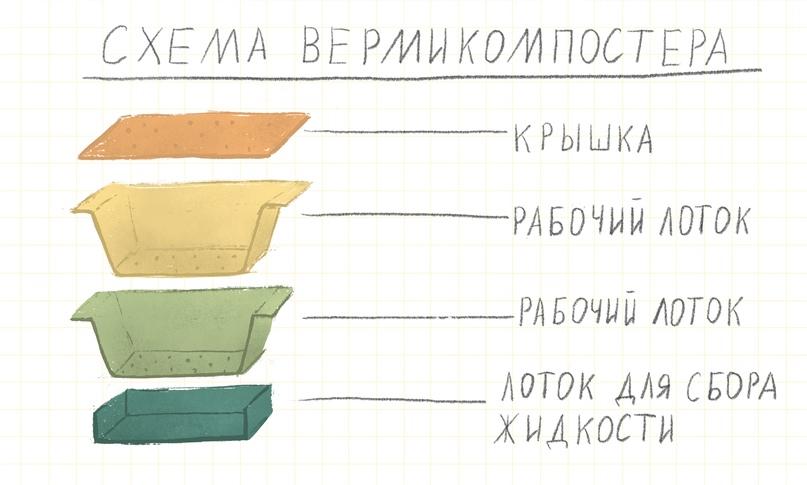 Переработка органики дома: практикум по вермикомпостированию, изображение №1