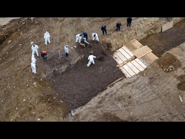 Sur l'île des morts à New York on enterre les victimes du coronavirus non réclamées