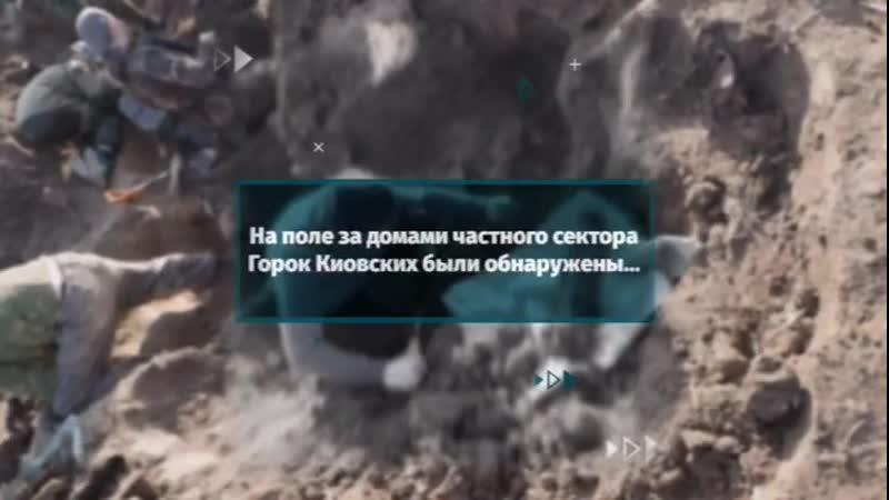 На поле за домами частного сектора Горок Киовских были обнаружены останки защитников Москвы сражавшихся на нашей земле в декабр