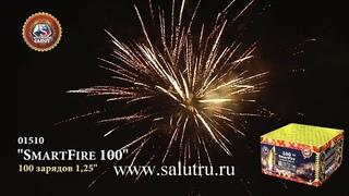Купить салют-фейерверк в Самаре и Тольятти «Разумный огонь 100».