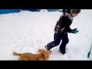 игра в снежки)