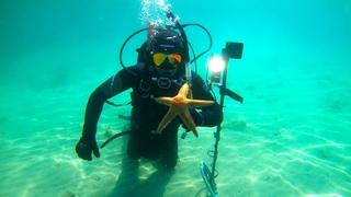 🌊⭐💍 Находки под водой. ЗВЕЗДА. ЗОЛОТО. СЕРЕБРО. МОНЕТЫ. Подводный поиск.