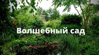 Обзор сада  - история волшебного сада и прогулка по 30-летнему саду! (Московская область)