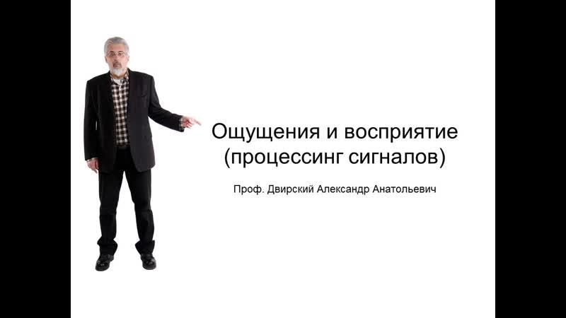 Ощущения и Восприятие лекция проф Александр Двирский