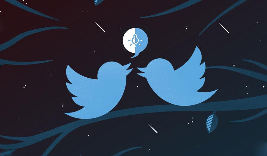 Что такое язык Twitter TM?