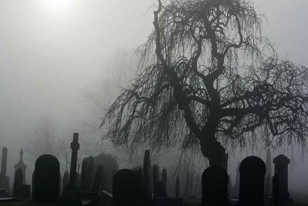 Легенда о кашляющем мертвеце История, которую я хочу рассказать, случилась со мной очень давно, когда я работала в одной небольшой конторе. По долгу службы мне приходилось иногда выезжать к
