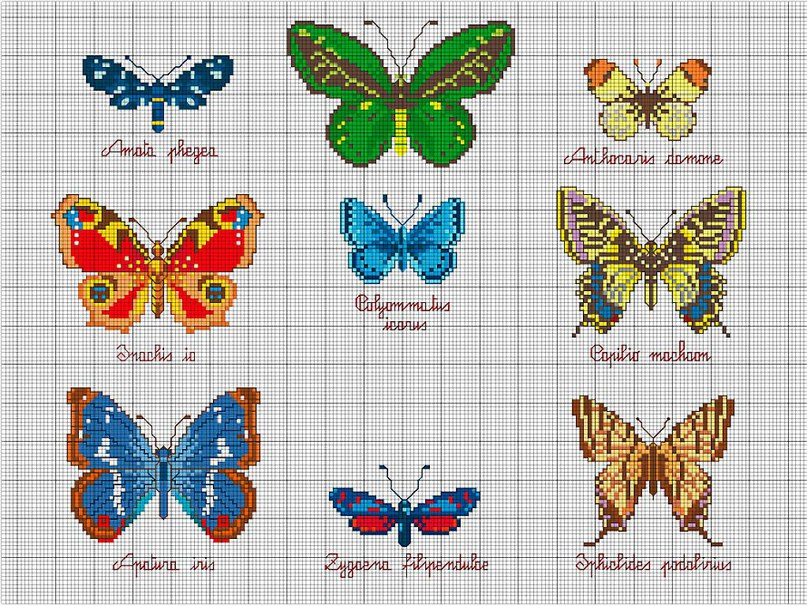 Вышивка бабочки для начинающих 16