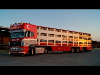 Scania R500 V8 Vamitra Belgium (HD)