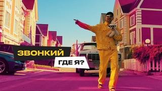 Звонкий — Где я? (Official Vizualizer)