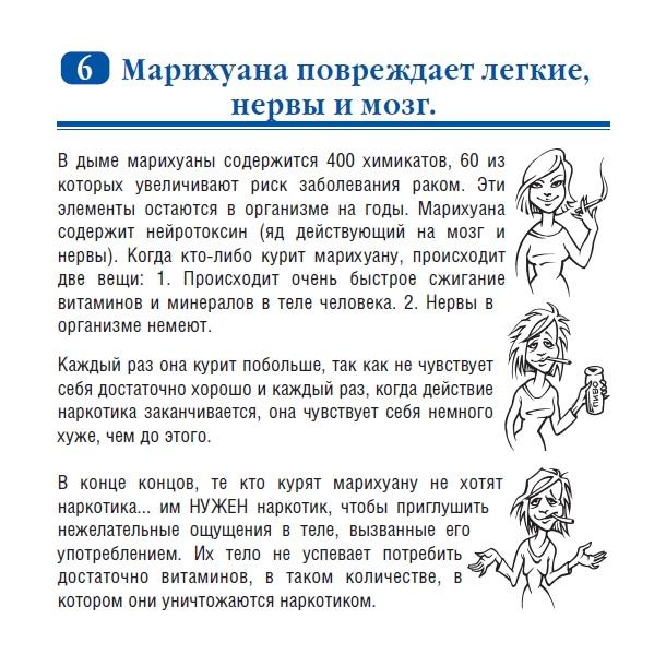 Мифы о наркотиках, изображение №6