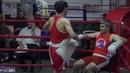2-е рейтинговые бои Лига бокса г. Москвы – 19.10.19 г. до 91 кг.