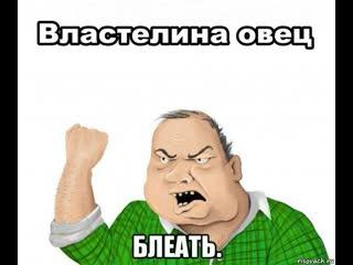 Шок! Zverrus TV на стриме ебёт овец) 18+