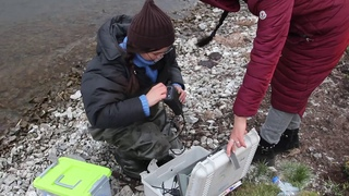 Научная экспедиция в Тыву
