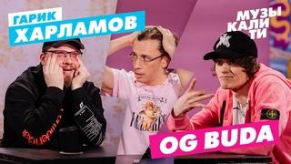 Музыкалити – Гарик Харламов и OG Buda