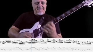 Frank Gambale - My Little Viper (Guitar solo transcription)