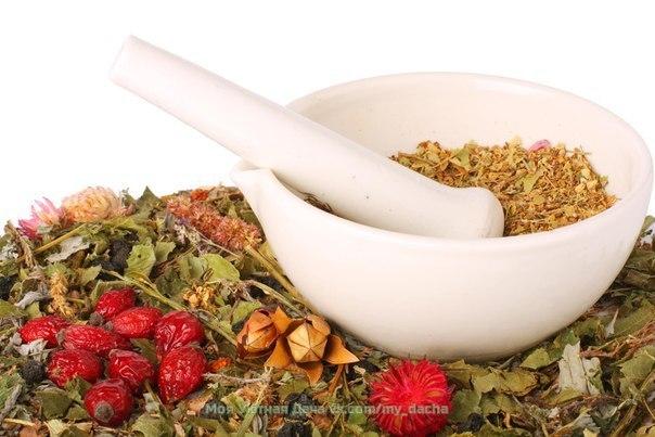 напитки наших предков душистый травяной чай - древний русский напиток, употребляемый на руси задолго до появления чайного листа, куда более эффективен и проверен временем, нежели фиточаи из