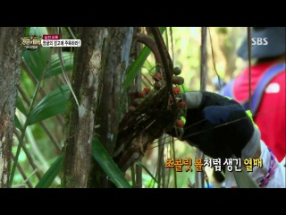 The Law Of Jungle in Carribean Ep.8 - INFINITE