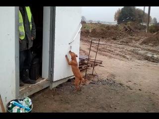 Video-2012-10-23-12-40-08