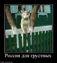 Фотоальбом Ивана Чепурнова