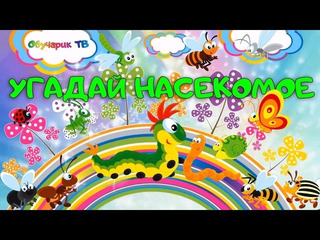 Загадки про насекомых для детей Угадай насекомых Игра мультик Презентация Домана