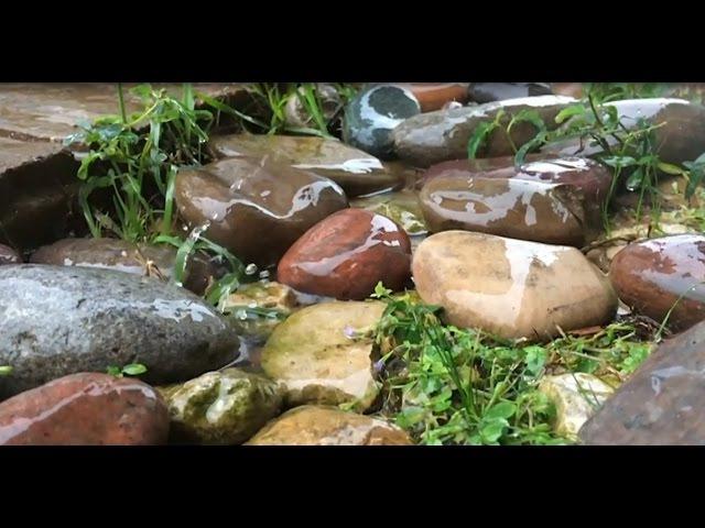 Шум дождя для сна Релаксация звук дождя Звуки природы для сна HD video 2 часа