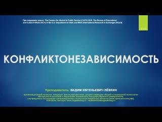 Вадим Лёвкин - Конфликтонезависимость