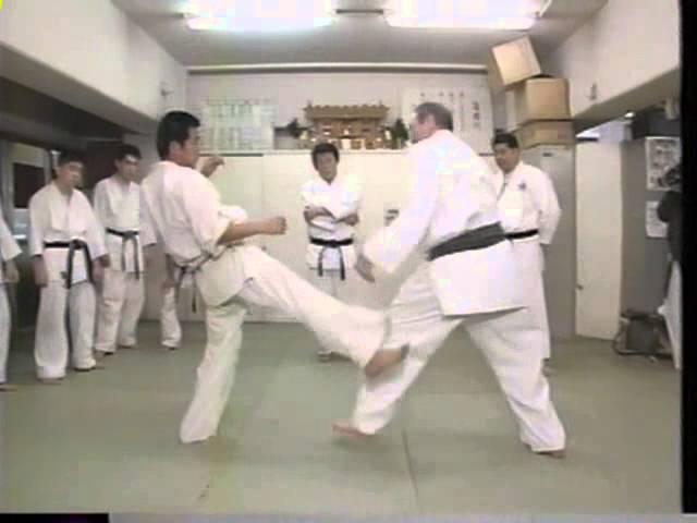 Йон Блюминг в гостях у Дайдо дзюку 1995