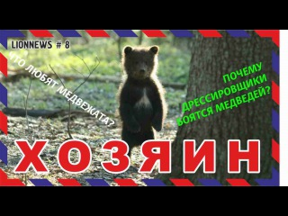 Львиная новость № 8. Наши медвежата