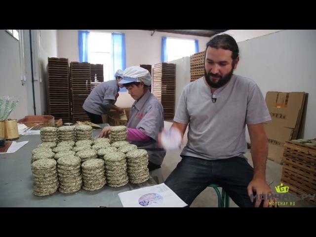 MOYCHAY.COM - Moychay Tea Company. First video in English =)