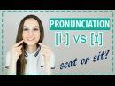 Произношение SEAT [i:] и SIT [ɪ] - English Spot