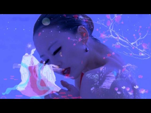 Cœur fragile - Richard Clayderman