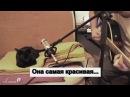 кошка по имени Луна поет вместе с хозяином Видео Dailymotion