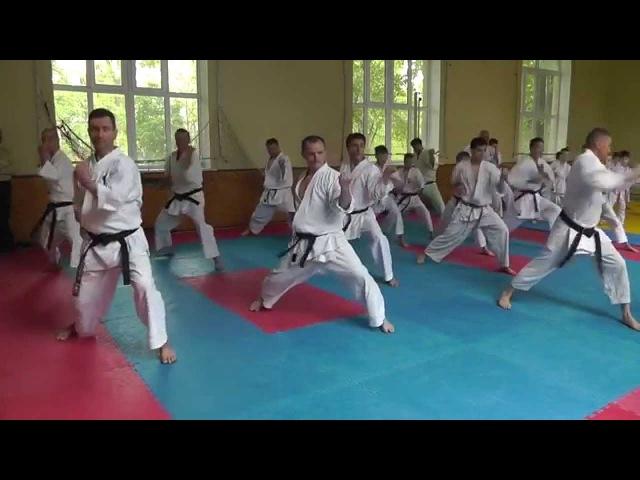 Семинар по Каратэномичи Запорожье май 2015 2 Seminar Karatenomichi Zaporozhye May 2015 2