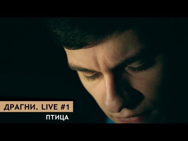 Драгни. Live 1 - Птица