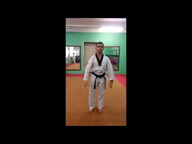 Taekwondo WTF Стойка Ап Соги