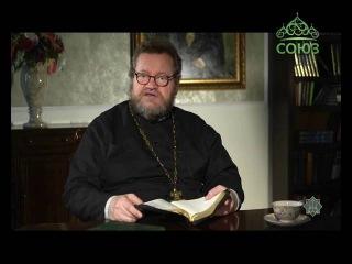 Беседы на Евангелие от Матфея с протоиереем Олегом Стеняевым. От 11 июля. Рождест ...