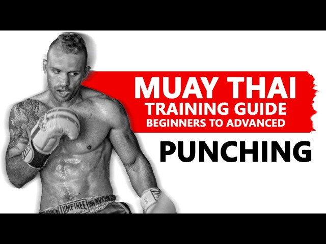 Muay Thai Training Guide. Beginners to Advanced: Punching