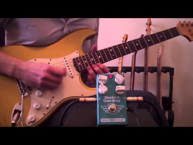 Mad Professor Bluebird Overdrive Delay demo by Marko Karhu