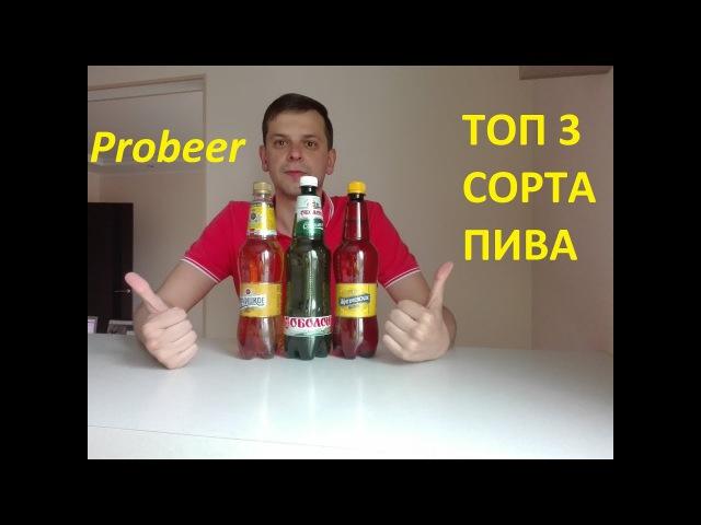 ТОП 3 СОРТА ПИВА PROBEER