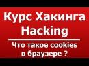 Что такое cookies в браузере