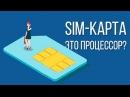 Знаете ли вы как устроена SIM-карта и как она работает