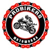 Круглогодичная мотошкола Probikers