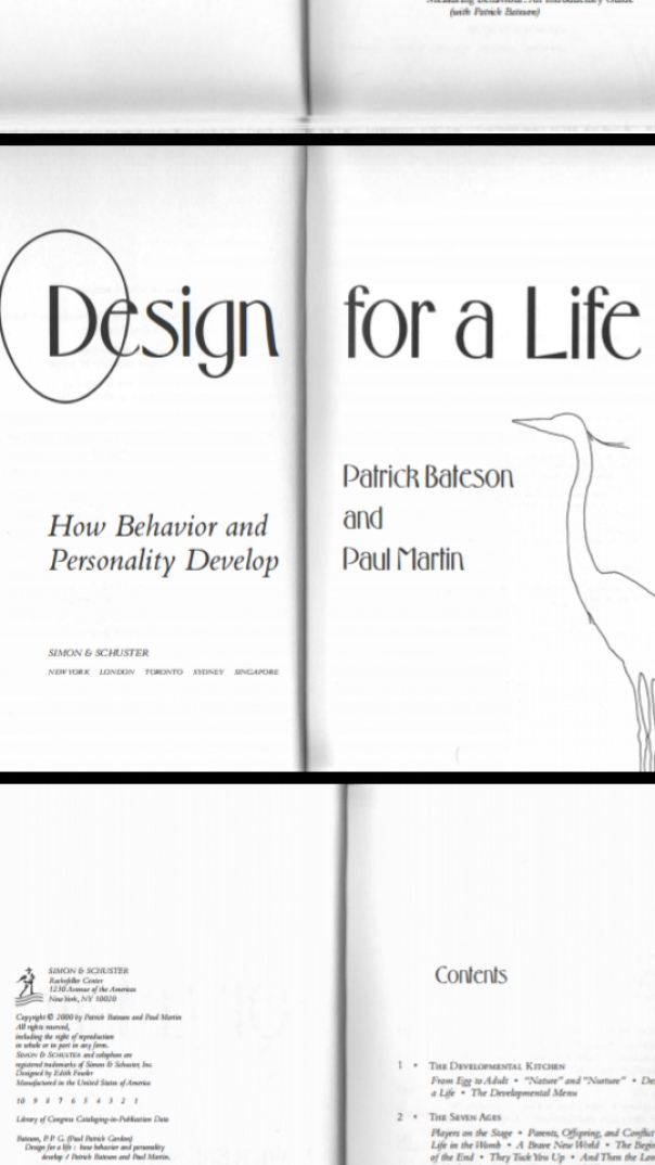 Design for a Life How Behaviork