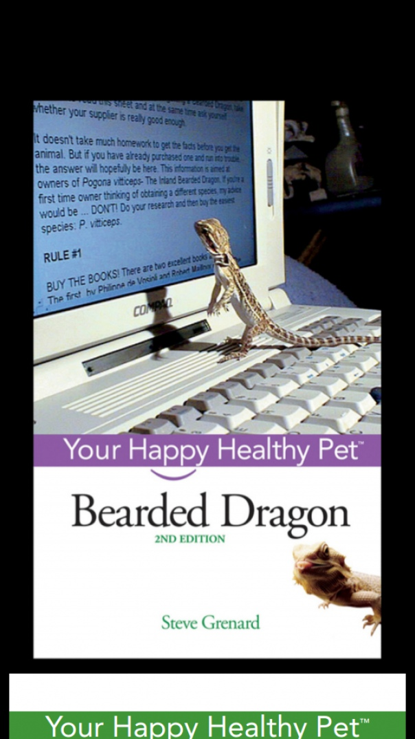 Bearded Dragon Your Happy Healthy
